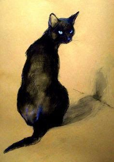 cat (2).png