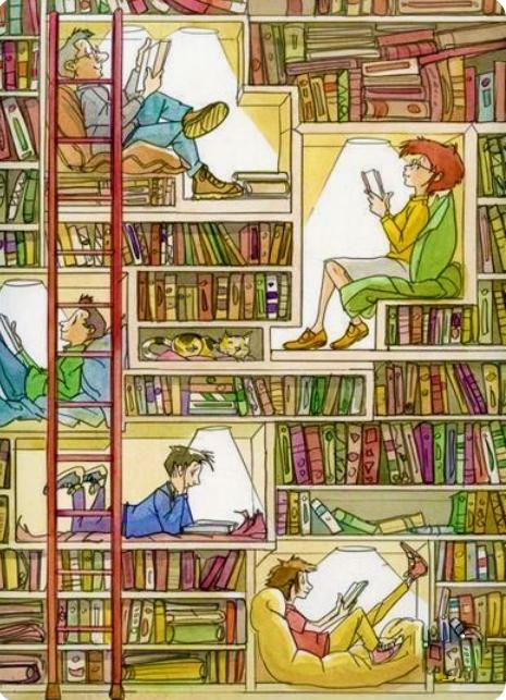 bookshelf (2).png
